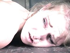 Inexperienced Stunner Ashley Lane Gets Tied Up And Rough Tormented. Hd
