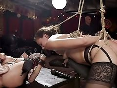Tied Up Super-bitch Called Avi Love Is Ready For Some Xxx Shit To Happen